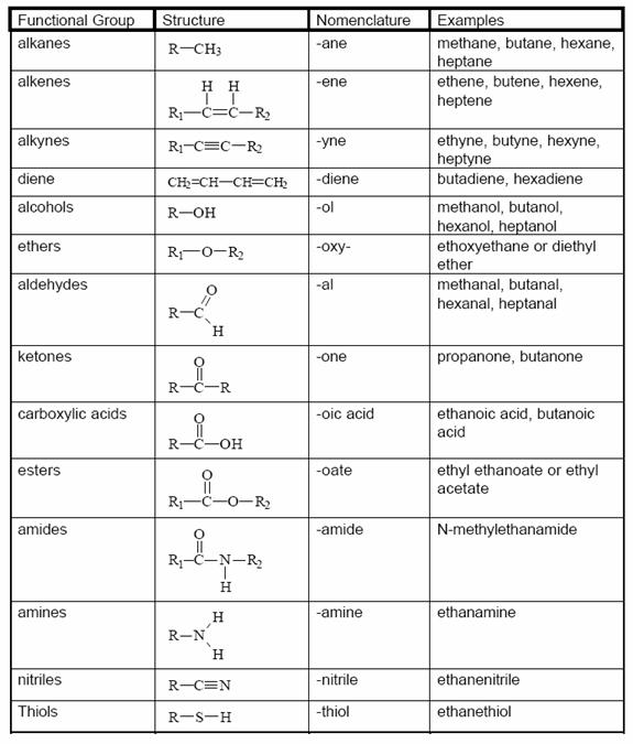 Functional Groups. The R Represents A Carbon Based Group. Worksheet. Functional Group Worksheet At Clickcart.co